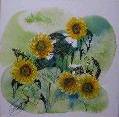 IMG_Sonnenblumen.JPG
